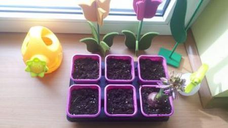 Wiosenne prace ogrodnicze w grupie MOTYLKI